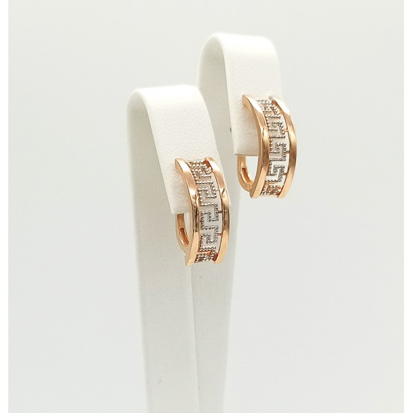 Auksiniai auskarai  073S14